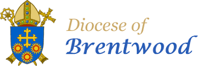 The Diocese of Brentwood website - Brentwood Catholic Youth Service
